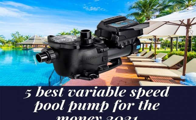 best variable speed pool pump for the money 2021
