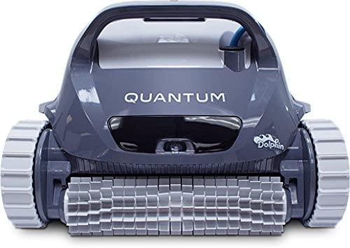 Dolphin quantum