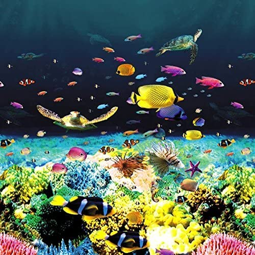 Great Barrier Reef - HD 15'x30'